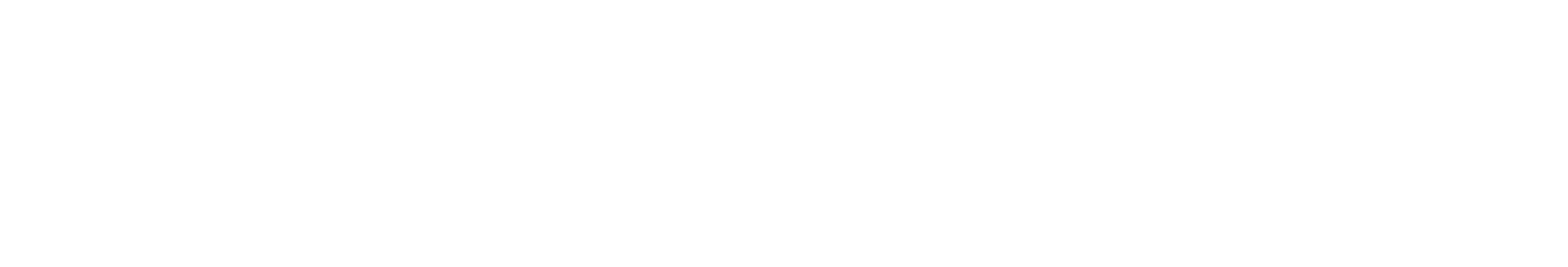 kretz-wahl-logo-weiss